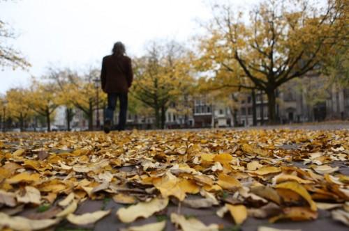 Funeral na Holanda - enterro na Holanda