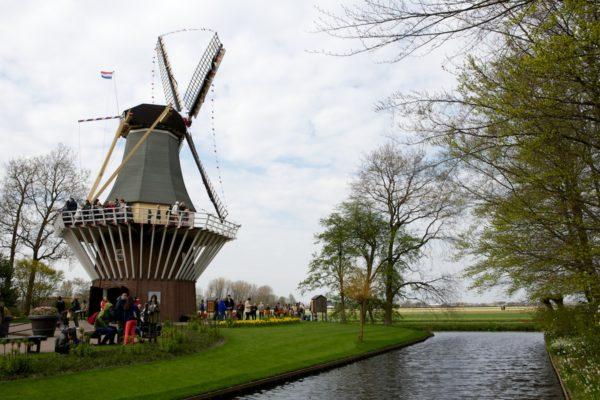 keukenhof - Holanda - Bailandesa.nl - regra dos 30%