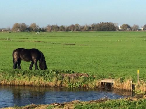 Waterland - Dica de Roteiro na Holanda - ©Bailandesa.nl