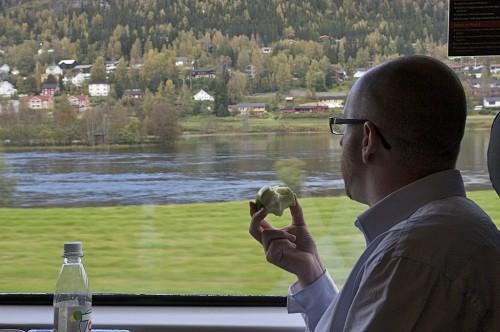 Ferrovia Oslo- Bergen - Noruega (c)Bailandesa.nl